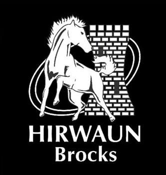 Hirwaun RFC